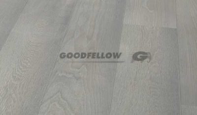 gf203